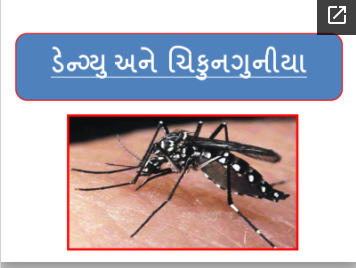 Learn about dengue, chickenpox and malaria